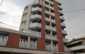 板橋区 - 徳丸 公寓 1LDK