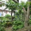 1LDK House to Buy in Nerima-ku Outside Space