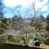 4K House to Buy in Ashigarashimo-gun Hakone-machi Interior
