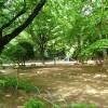1K アパート 練馬区 公園