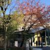 1SLDK Apartment to Rent in Minato-ku Leisure / Sightseeing