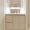 1LDK Apartment to Rent in Minato-ku Washroom