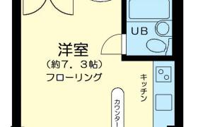 1R Mansion in Sanno - Ota-ku