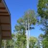 在北佐久郡軽井沢町购买3LDK 独栋住宅的 View / Scenery