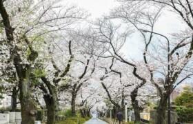 2LDK 맨션 in Nishiazabu - Minato-ku