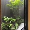 Whole Building Hotel/Ryokan to Buy in Kyoto-shi Shimogyo-ku Garden