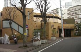 品川区東五反田-1DK{building type}