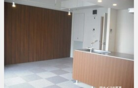 港區海岸(3丁目)-2LDK公寓大廈