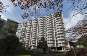 堺市南区桃山台-2DK公寓