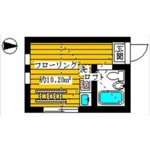 新宿区上落合-1R公寓大厦 楼层布局