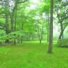 在北佐久郡軽井沢町购买4LDK 独栋住宅的 花园