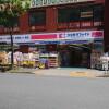 1LDK House to Rent in Edogawa-ku Drugstore