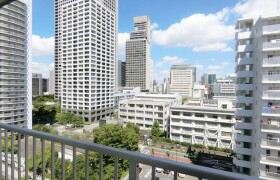 港區芝浦(2〜4丁目)-1R公寓大廈