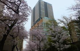 港区 赤坂 4LDK アパート