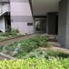 在澀谷區內租賃2LDK 公寓大廈 的房產 公用空間
