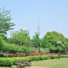 Whole Building Apartment to Buy in Koto-ku Park