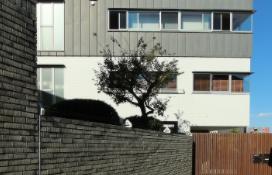 1SLDK Mansion in Shoto - Shibuya-ku