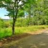 Land only to Buy in Kitasaku-gun Karuizawa-machi Interior