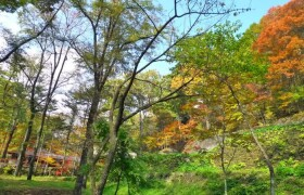 Land only {building type} in Karuizawa(oaza) - Kitasaku-gun Karuizawa-machi