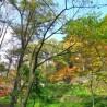 Land only Land only to Buy in Kitasaku-gun Karuizawa-machi View / Scenery