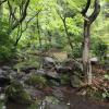 1K Apartment to Rent in Minato-ku Park