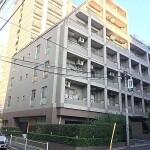 1DK 大厦式公寓