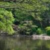 3LDK House to Buy in Minato-ku Park