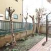 2SLDK House to Rent in Nerima-ku Interior