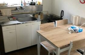 新宿区大久保-2DK公寓