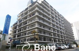港区 芝浦(2〜4丁目) 1LDK {building type}