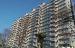 2SLDK {building type} in Shimmatsudo - Matsudo-shi