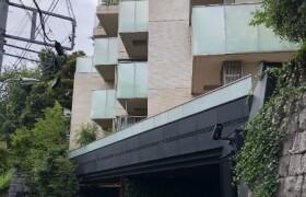 2LDK {building type} in Shirokanedai - Minato-ku