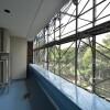 3LDK アパート 横浜市中区 内装