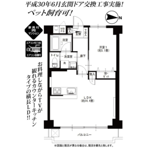 1LDK {building type} in Ojima - Koto-ku Floorplan