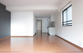 中央区月島-2LDK公寓大厦