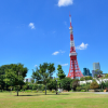 Whole Building Office to Buy in Minato-ku Park