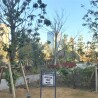 1LDK Apartment to Buy in Chuo-ku Common Area