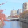 1K Apartment to Rent in Koto-ku Landmark