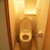 在豊島區內租賃1K 公寓大廈 的房產 廁所