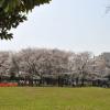 1LDK Apartment to Rent in Shinagawa-ku Park