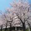 1LDK Apartment to Rent in Musashino-shi Exterior
