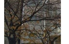 Whole Building {building type} in Shikitsunishi - Osaka-shi Naniwa-ku