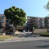 3LDK Apartment to Buy in Naka-gun Oiso-machi Interior