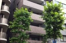 2LDK Apartment in Akasaka - Minato-ku