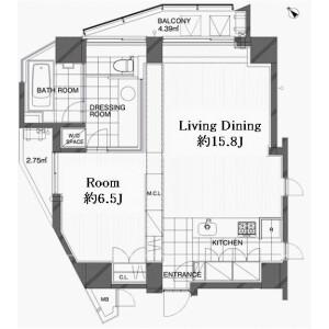 澀谷區広尾-私有公寓大廈 房間格局
