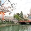 在京都市左京區內租賃1DK 公寓大廈 的房產 Leisure / Sightseeing