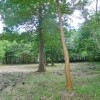 Land only to Buy in Ashigarashimo-gun Hakone-machi Interior