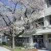 在世田谷区购买5SLDK 独栋住宅的 Primary School