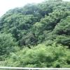3DK Apartment to Rent in Kawasaki-shi Takatsu-ku View / Scenery