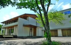 北佐久郡軽井沢町軽井沢(大字)-3LDK{building type}